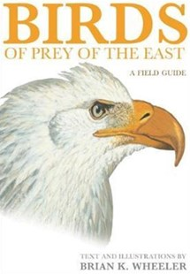 Hawks of the Eastern USA and Canada by Brian K. Wheeler, John M. Economidy (9780691117065) - PaperBack - Pets & Nature Birds