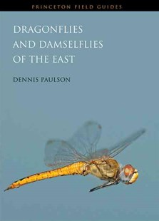 Dragonflies and Damselflies of the East by Dennis Paulson (9780691122830) - PaperBack - Pets & Nature Wildlife