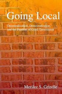 Going Local by Merilee S. Grindle, Merilee S. Grindle (9780691140988) - PaperBack - Politics International Politics