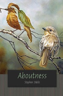Aboutness by Stephen Yablo (9780691144955) - HardCover - Philosophy Modern