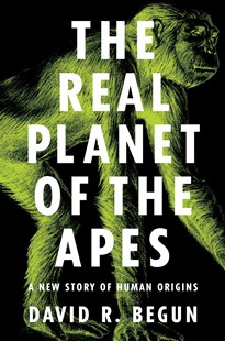 Real Planet of the Apes by David R. Begun (9780691149240) - HardCover - Science & Technology Biology