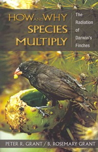How and Why Species Multiply by Peter R. Grant, B. Rosemary Grant (9780691149998) - PaperBack - Pets & Nature Birds