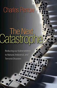 Next Catastrophe by Charles Perrow (9780691150161) - PaperBack - Business & Finance Business Communication