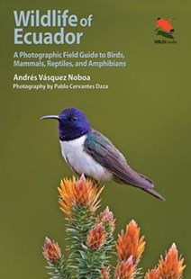 Wildlife of Ecuador by Andres Vasquez Noboa, Pablo Cervantes Daza (9780691161365) - PaperBack - Art & Architecture Photography - Pictorial
