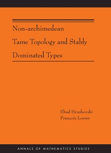Non-Archimedean Tame Topology and Stably Dominated Types (AM-192) by Ehud Hrushovski, Francois Loeser (9780691161693) - PaperBack - Science & Technology Mathematics