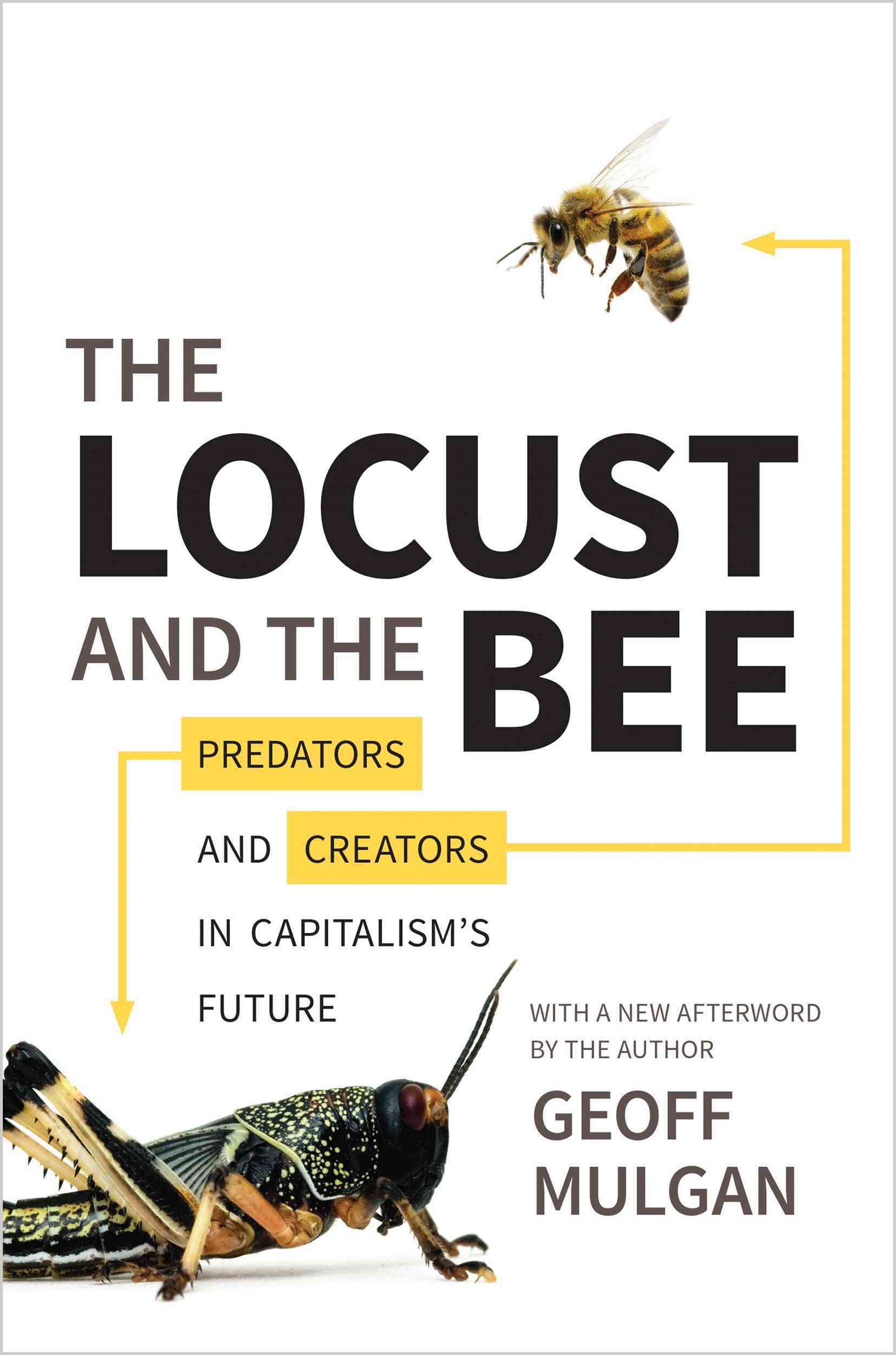 Locust and the Bee