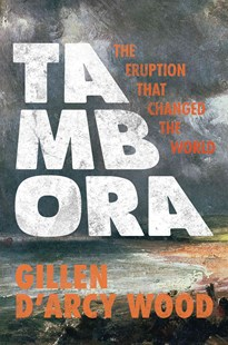 Tambora by Gillen D'Arcy Wood (9780691168623) - PaperBack - History Modern