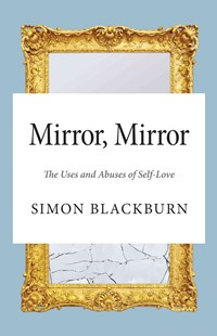 Mirror by Simon Blackburn (9780691169118) - PaperBack - Philosophy Modern