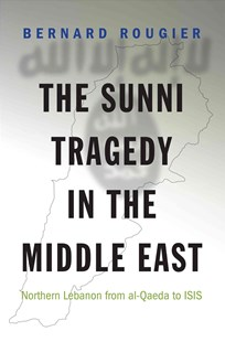 Sunni Tragedy in the Middle East by Bernard Rougier (9780691170015) - HardCover - History Middle Eastern