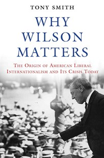 Why Wilson Matters by Tony Smith (9780691171678) - HardCover - Politics Political Issues