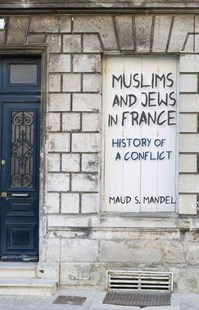 Muslims and Jews in France by Maud S. Mandel (9780691173504) - PaperBack - History European