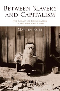 Between Slavery and Capitalism by Martin Ruef (9780691173597) - PaperBack - Business & Finance Ecommerce