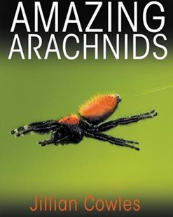 Amazing Arachnids by Jillian Cowles (9780691176581) - HardCover - Reference