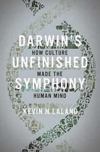 Darwin`s Unfinished Symphony: How Culture Made the Human Mind by Kevin N Laland (9780691182810) - PaperBack - Science & Technology Biology