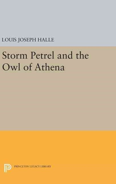 Storm Petrel and the Owl of Athena
