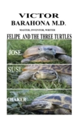 Felipe and the Three Turtles