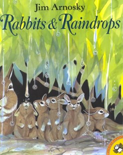 Rabbits and Raindrops by Jim Arnosky, Jim Arnosky (9780698118157) - PaperBack - Children's Fiction Intermediate (5-7)