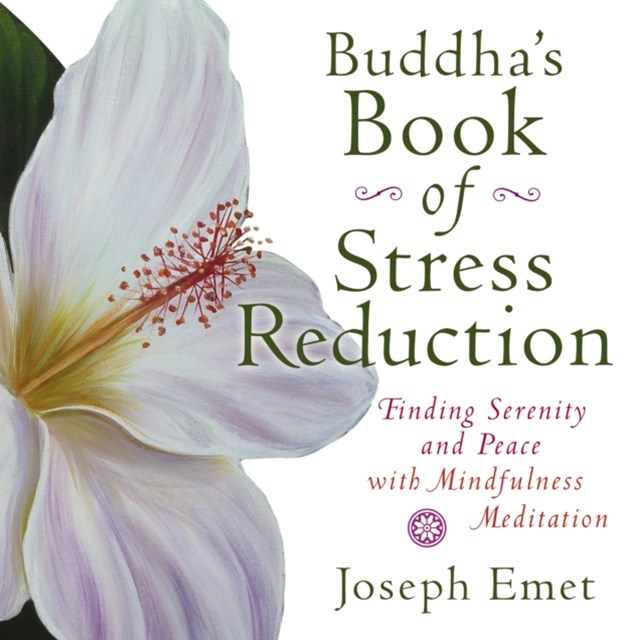 (ebook) Buddha's Book of Stress Reduction