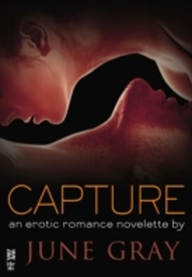 (ebook) Capture