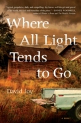 (ebook) Where All Light Tends to Go