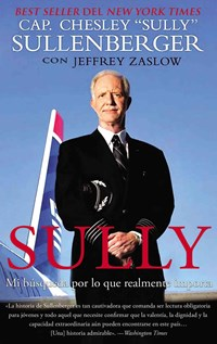 sully my search for what really matters pdf