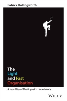 (ebook) The Light and Fast Organisation