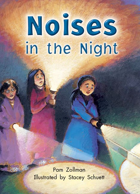 Rigby Literacy Collections Take-Home Library Middle Primary: Noises in the Night (Reading Level 22/F&P Level M)