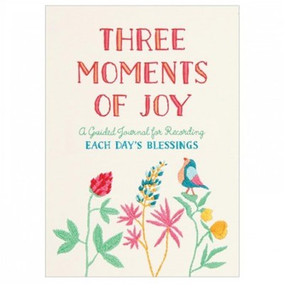 Three Moments of Joy Guided Activity Book