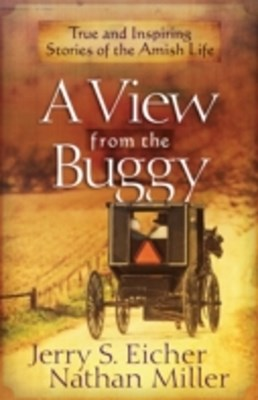 (ebook) View from the Buggy