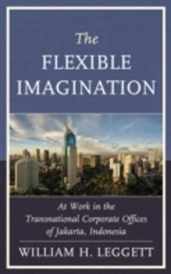 Flexible Imagination