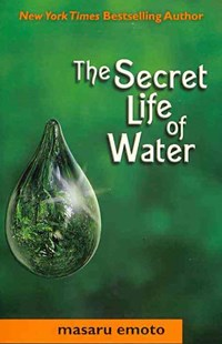 Secret Life of Water by Masaru Emoto, David A. Thayne (9780743290326) - PaperBack - Philosophy