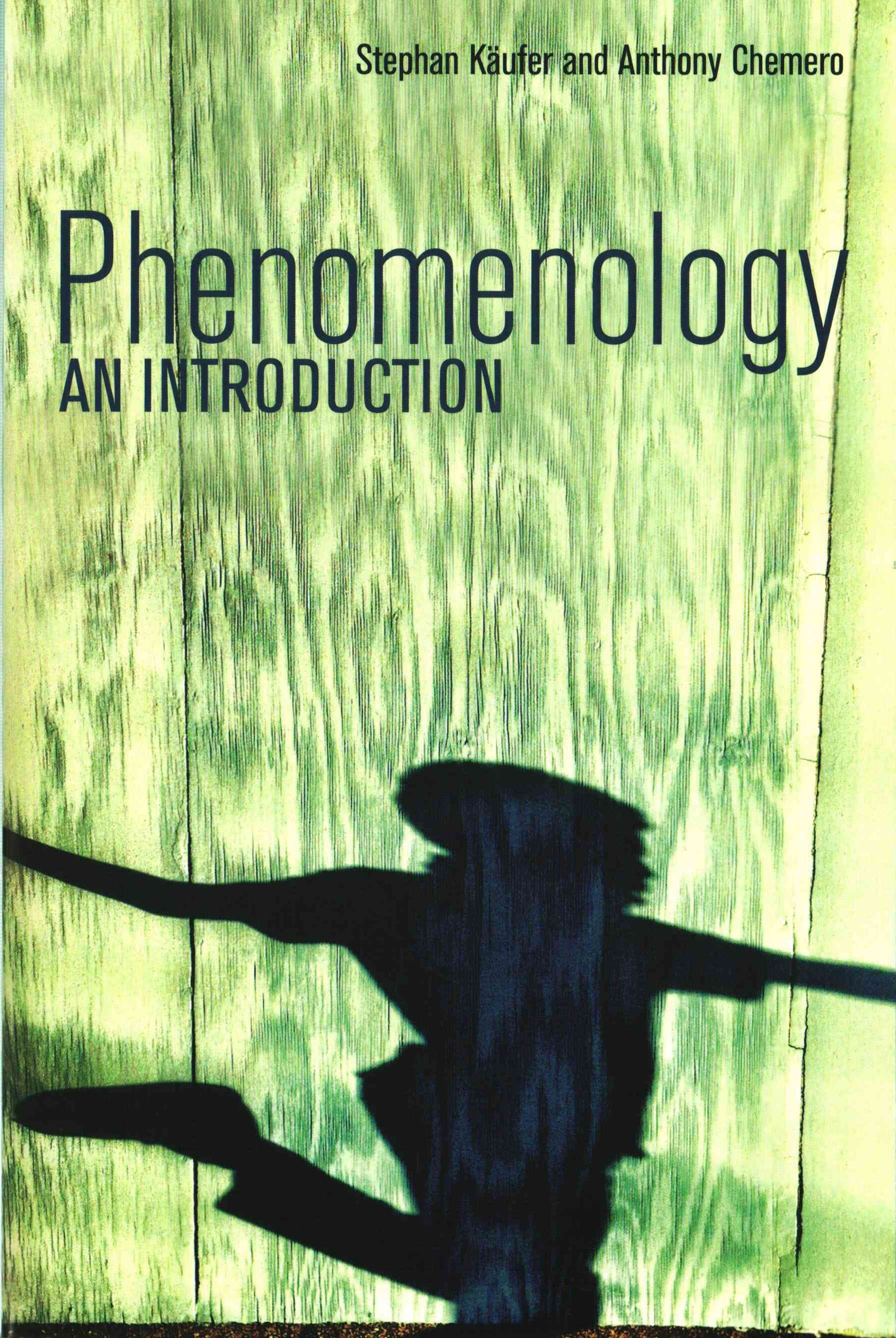 Phenomenology - an Introduction