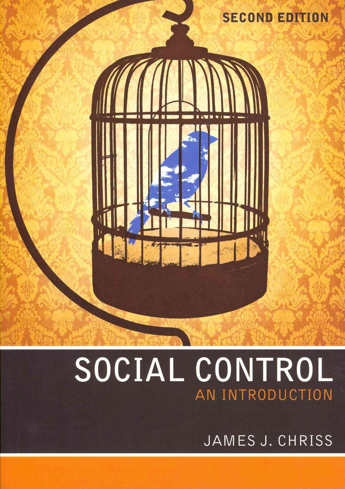Social Control - an Introduction 2E