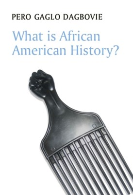 (ebook) What is African American History?
