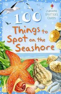 100 Things to Spot on the Seashore Usborne Spotters Cards