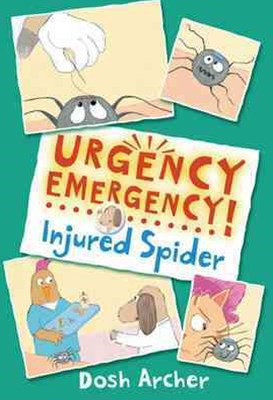 Injured Spider Urgency Emergency