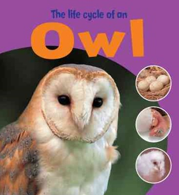 Learning About Life Cycles: The Life Cycle of an Owl