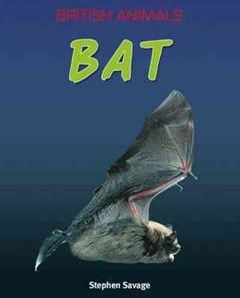British Animals: Bat