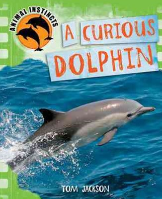 Animal Instincts: A Curious Dolphin