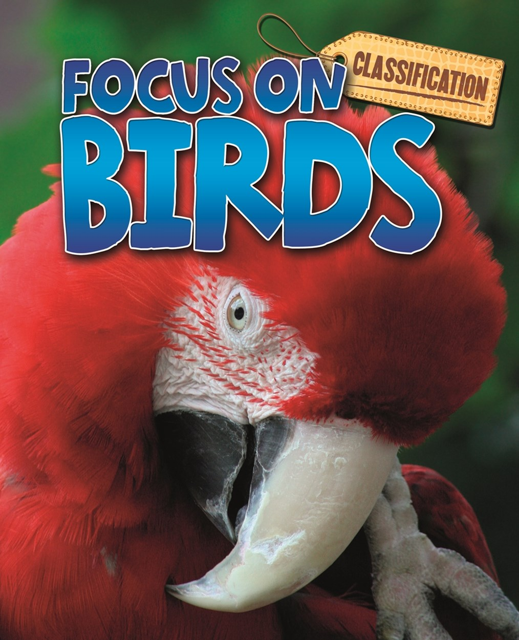 Classification: Focus on: Birds