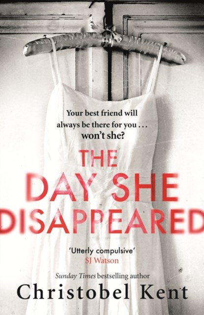 Day She Disappeared