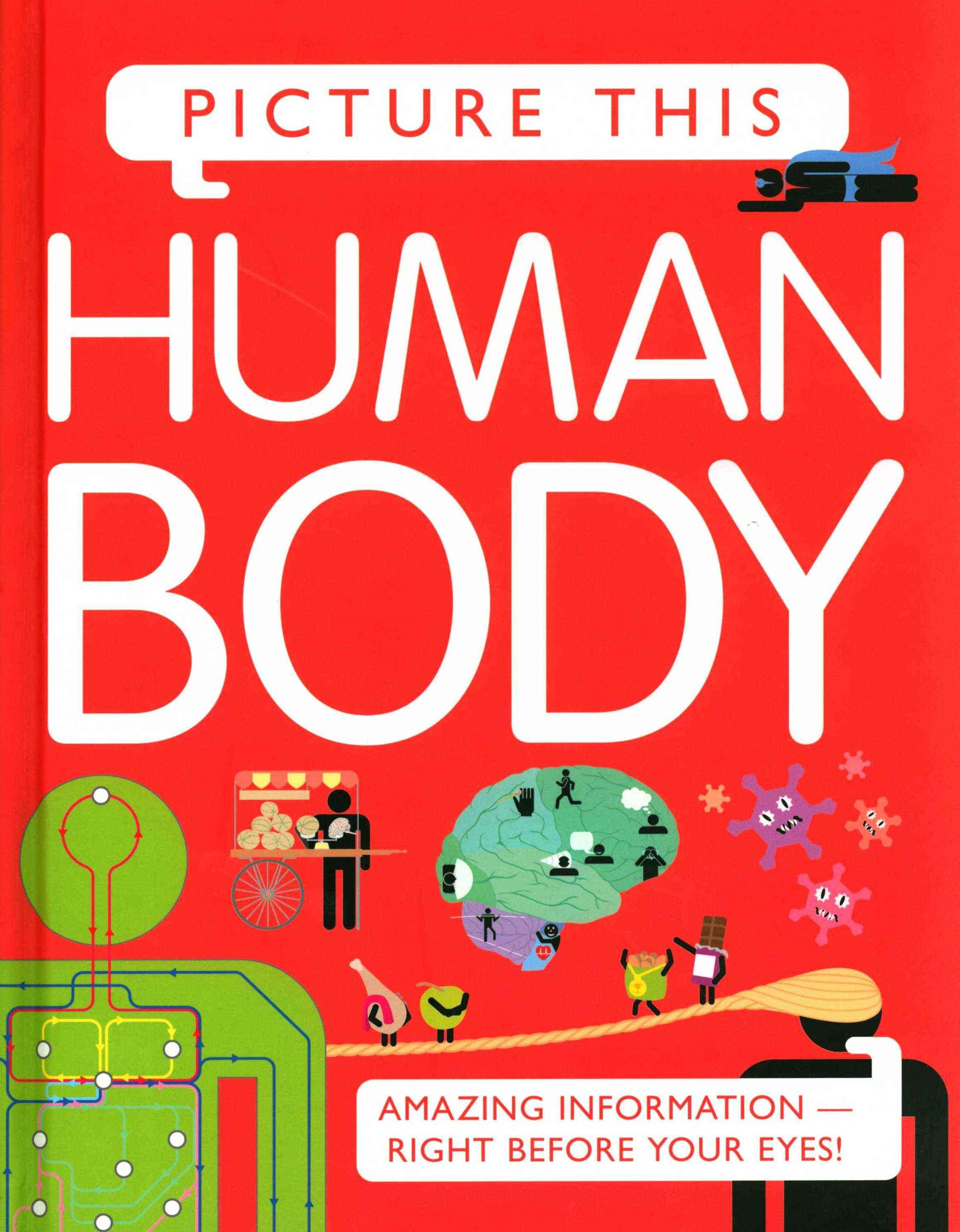 Picture This Human Body