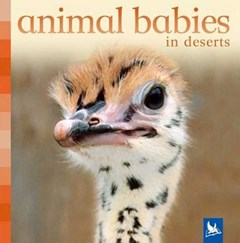 Animal Babies in Deserts