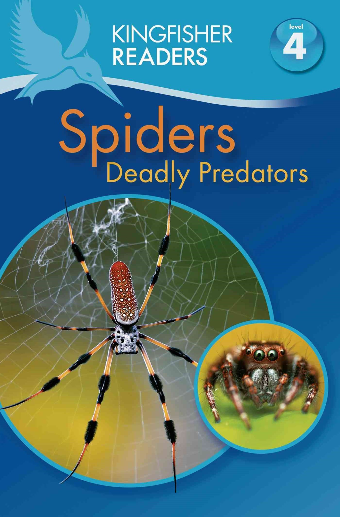 Spiders - Kingfisher Readers
