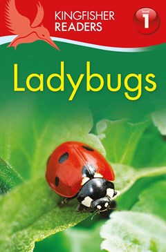 Kingfisher Readers L1: Ladybugs