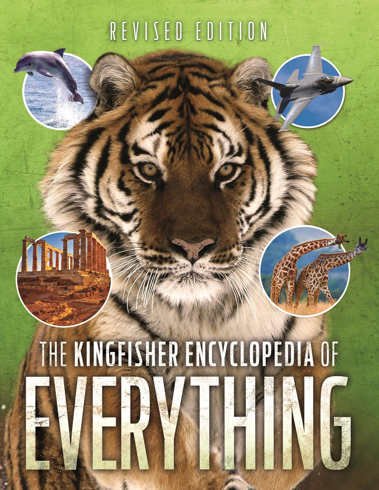 Kingfisher Encyclopedia of Everything