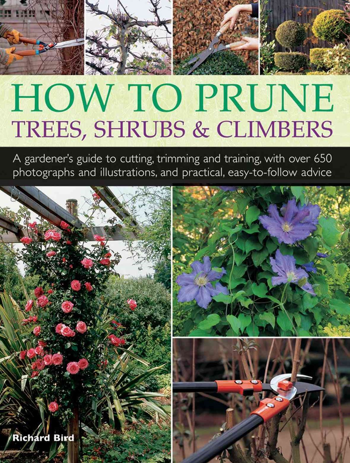 How to Prune Trees, Shrubs and Climbers