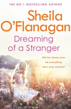 (ebook) Dreaming of a Stranger