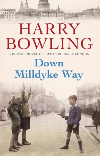 (ebook) Down Milldyke Way