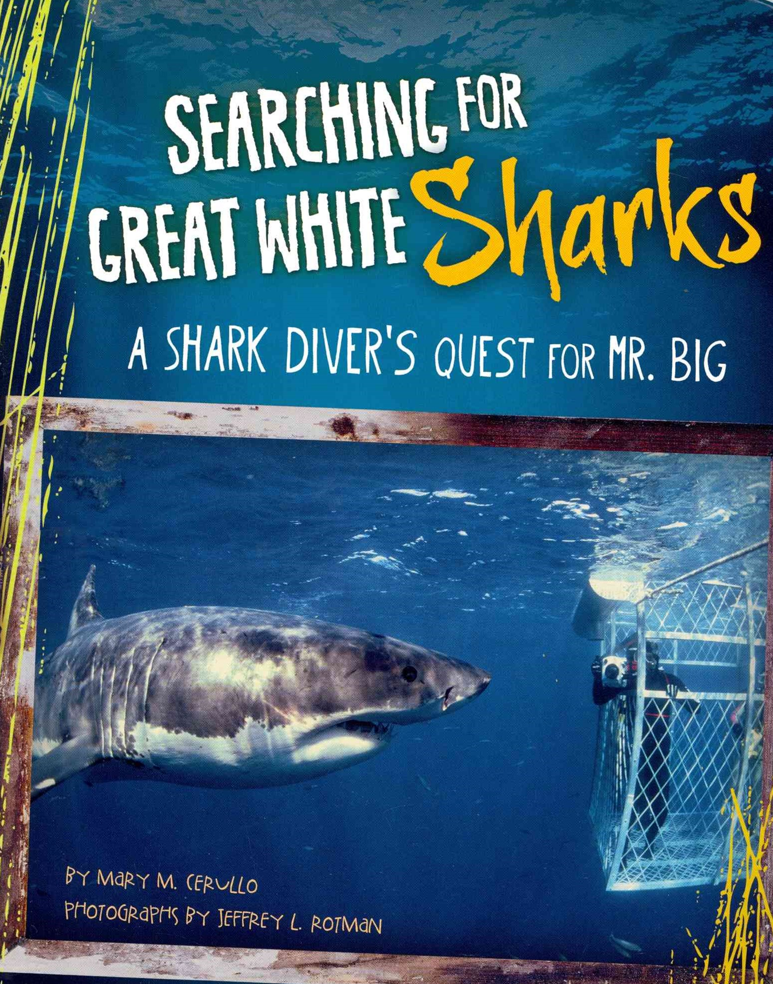 Searching for Great White Sharks